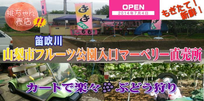 山梨市フルーツ公園前桃ちゃん売店